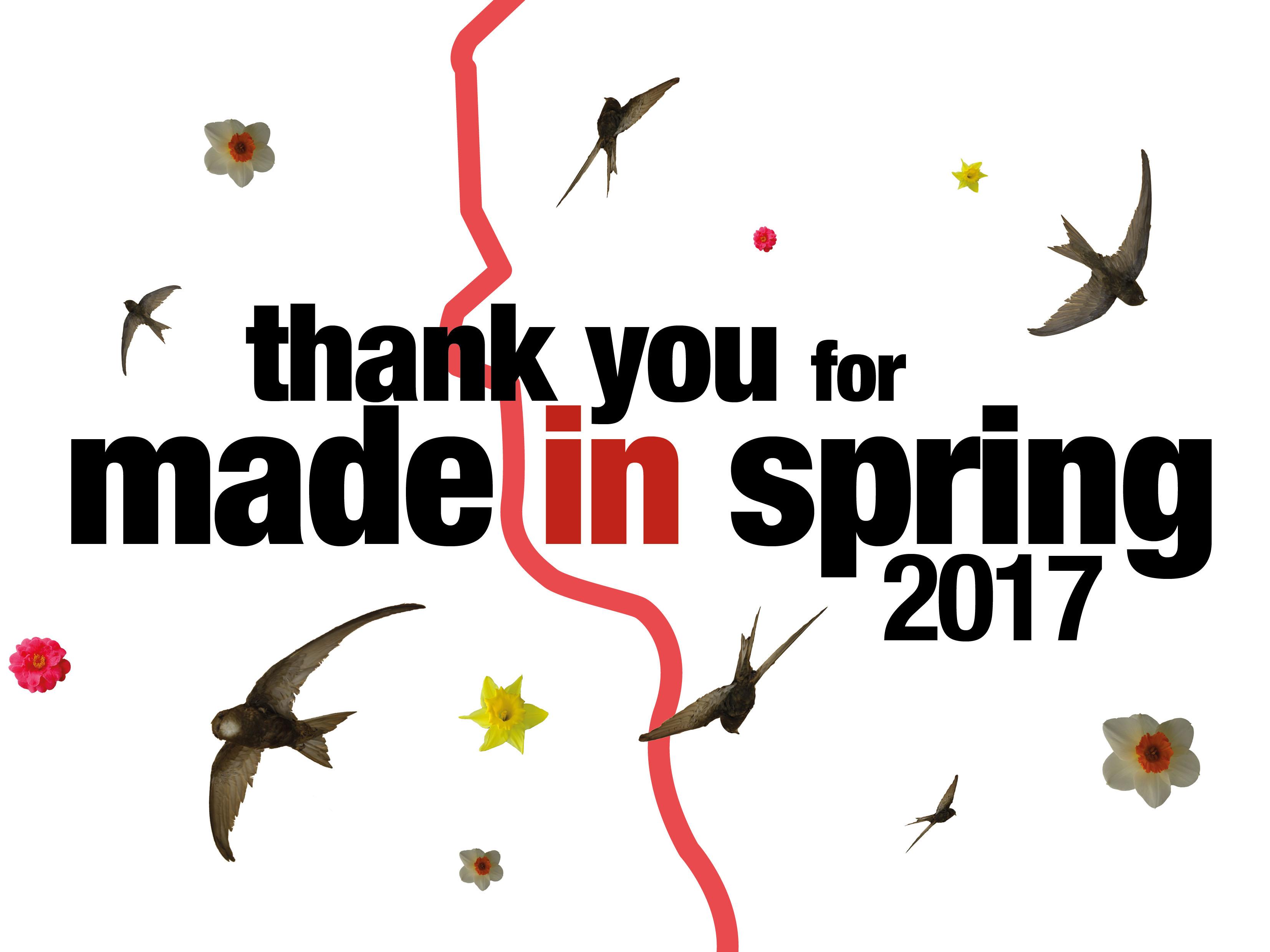 masdeinspring2017-thankyou-sq
