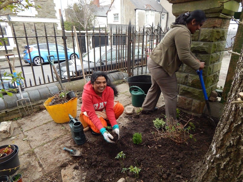 Mackintosh Community Gardens
